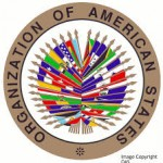 OAS Online Scholarship Opportunities